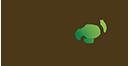 Căn hộ Vista Verde